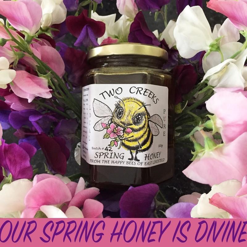 Liquid-Spring-Honey-promo-photo