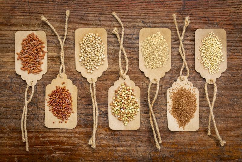 Crowd-Harvest-Seed-Banks